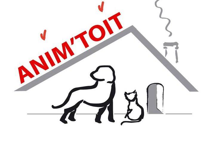Ouverture du refuge aux chats